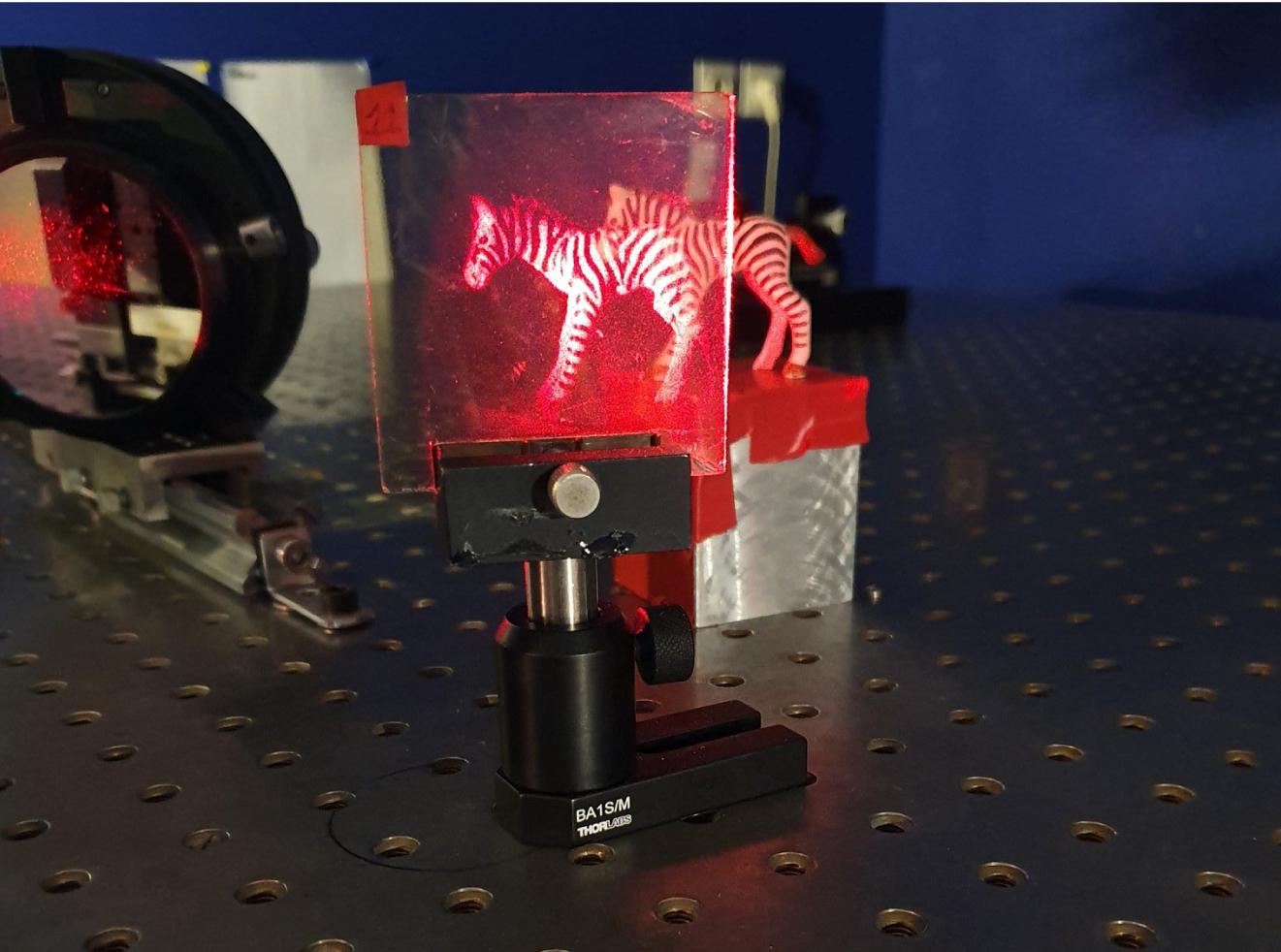 hologramme-zebre